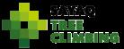 SAYAQ Tree Climbing – wir sind Ihr Partner in Sachen Baumpflegearbeiten